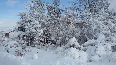 TERUEL EXISTE y Con Nieve. Asister en Cedrillas